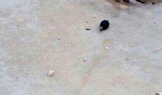معلومات عن رمي قنبلة صوتية على احدى محطات المحروقات في منطقة الكولا فجرا
