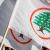 """منسقية """"القوات اللبنانية"""" في سيدني: من المجحف المساومة على صوت اللبناني في الإنتشار"""