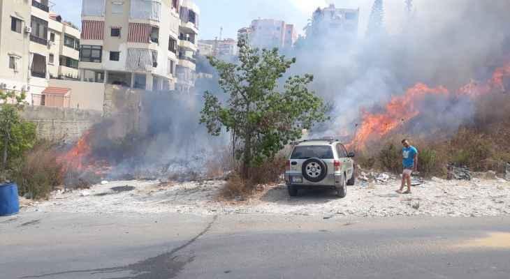 """""""النشرة"""": حريق بمنطقة عين الدلب في صيدا بالعشاب والأشجار"""