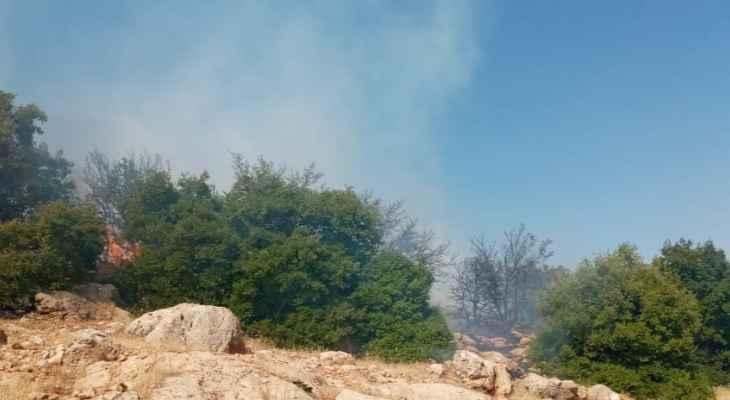 حريق في أحراج الجوبانية وبرقا والدفاع المدني يعمل على اخماده