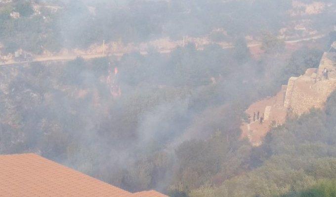 مدير محطة الابحاث العلمية الزراعية في الهرمل: الحريق الذي شب في القبيات بدأ يمتد الى جرود الهرمل